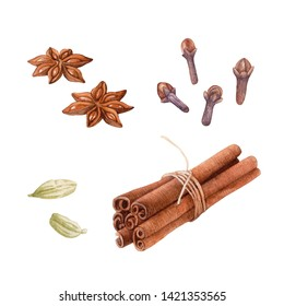 Watercolor spices isolated on white background. Cinnamon, cardamon, clove, anise.