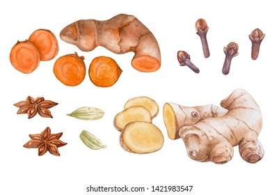 Watercolor spices isolated on white background. Curcuma root, fresh ginger, clove, cardamon, anise.