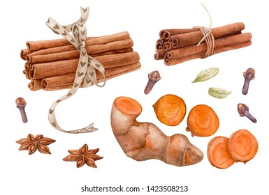 Watercolor spices isolated on white background. Cinnamon, anise, cardamon, clove, curcuma root.