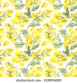 Watercolor spring flowers seamless pattern with yellow mimosa branches. Bright background with flowers of acacia silvery in a botanical sketch style. Texture for fabric, wrapping paper