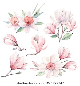 Watercolor spring  flowers set in vintage style. It's perfect for greeting cards, wedding invitation, wedding design, birthday and easter cards. Watercolor botanical illustration.