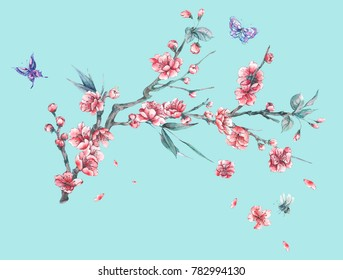 Watercolor spring greeting card vintage floral bouquet with pink blooming branches of cherry peach, pear, sakura, apple trees and butterflies, flower botanical illustration isolated on blue background