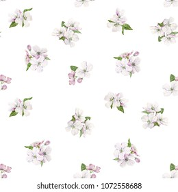 Watercolor spring pattern with a blossoming apple-tree, tender white flowers