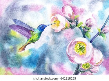 Watercolor spring picture with hummingbird