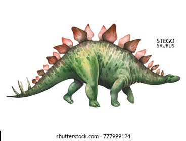 Watercolor stegosaurus. Hand painted dinosaur isolated on white background. Herbivore animal of the prehistoric period