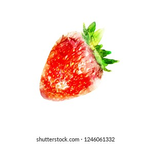 Watercolor strawberry on white
