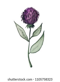 Watercolor, stylized flower of greater burdock also known as gobo, purple ball in black thorns.