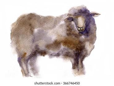 Watercolor stylized sheep on a white background. hand drawn cute illustration. Creative farm animals.Background for Muslim Community, Festival of Sacrifice, Eid-Al-Adha Mubarak. Tee-shirt graphic