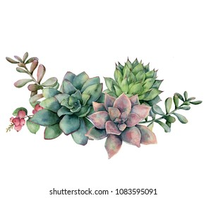 Watercolor succulent bouquet with berries. Hand painted green and violet flowers, branch and red berries isolated on white background. Floral illustration for design, fabric, print or background
