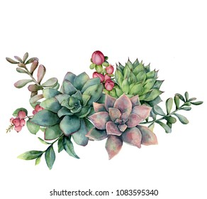 Watercolor succulent bouquet with red berries. Hand painted green and violet flowers, branch and hypericum isolated on white background. Floral illustration for design, fabric, print or background