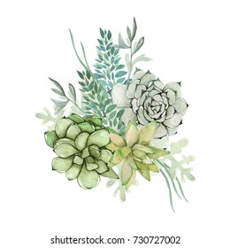 Watercolor succulent bouquet with sprigs. Beautiful flowers with succulents.