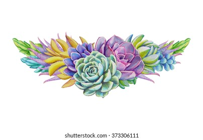 watercolor succulent plants composition, floral border bouquet illustration, isolated on white background