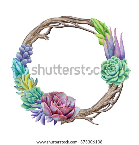 Watercolor Succulent Plants Wreath Floral Round Stock Illustration ...