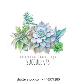 Watercolor succulents logo design. Hand drawn floral composition for banner or label. Green plants bouquet isolated on white background. Botanical illustration