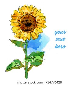 Watercolor Sunflower for Greeting card