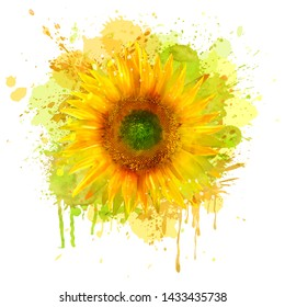 Watercolor sunflower illustration  isolated on white background