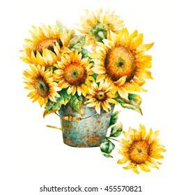 Watercolor sunflowers bouquet, hand paint illustration.