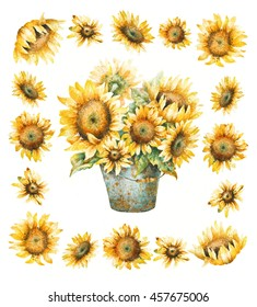 Watercolor sunflowers bouquet, hand paint illustration on a white background.