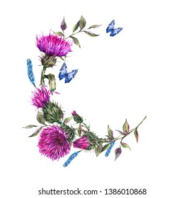 Watercolor thistle round frame, blue butterflies, wild flowers illustration, meadow herbs vintage wreath. Watercolour botanical illustration isolated on white background