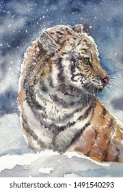 watercolor tiger in the falling snow