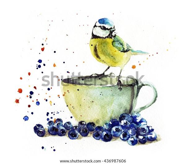 A cup tit pics