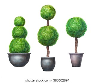 watercolor topiary trees, isolated design elements set, greenery clip art