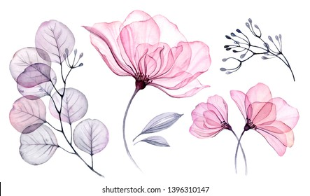 Watercolor Transparent floral set isolated on white collection of roses, leaves, branches bundle in pastel pink, grey, violet, purple, botanical illustration wedding design