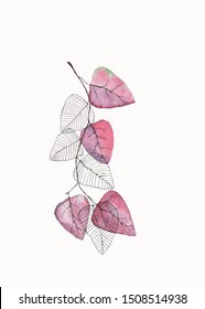 Watercolor tree branch with pink and skeleton leaves on white background. Hand drawn illustration
