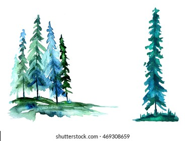 Watercolor trees, forest, pine, blue spruce,landscape. In different embodiments. Illustration made for a different design. Isolated on white background