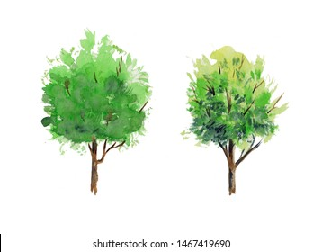Watercolor trees set. Summer tree in vibrant green shades illustration isolated on white background. Hand drawing water colour forest design elements. Abstract peaceful nature decorations.