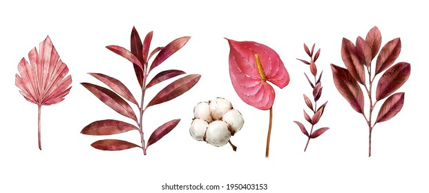 Watercolor tropical clipart with leaves, anthurium flower, dry flora, cotton. Exotic set of natural leaves and flowers. Hand painted watercolor. Botanical hand drawn illustration