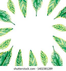 Watercolor tropical floral frame. Summer illustration for invitation, wedding or greeting cards, postcard