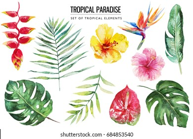 Watercolor tropical floral illustration set with green leaves, hibiscus & flowers for wedding stationary, greetings, wallpapers, fashion, backgrounds, textures, DIY, wrappers, postcards, logo, etc.