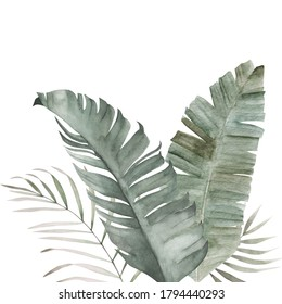 Watercolor tropical leaves poster. Hand painted exotic palm green branches composition on white background. Summer vintage plants illustration
