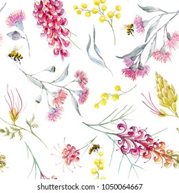 Watercolor tropical pattern with Australian plants, flowers of mimosa.  Grevillea, flying bees