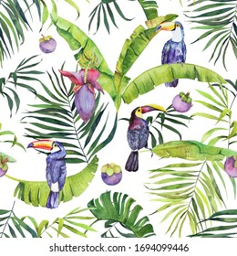 Watercolor tropical pattern with banana leaves, flowers, toucans and fruits on white green background.
