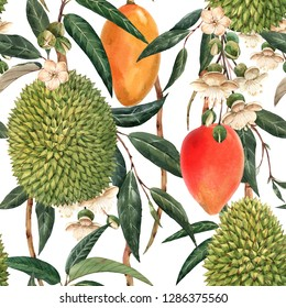 Watercolor tropical pattern, durian fruit, mango on a branch, white flowers and leaves