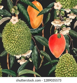 Watercolor tropical pattern, durian fruit, mango on a branch, white flowers and leaves. dark background