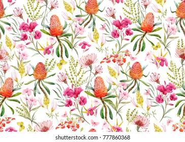 Watercolor tropical  pattern , flowers, banksias orange, oleander pink, exotic Australian flowers, red flowers  Eremophila dichroantha.