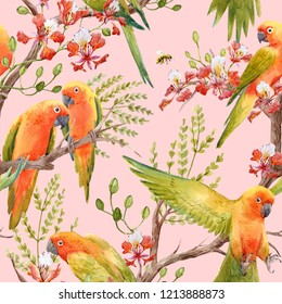 Watercolor tropical pattern with parrot lovebirds on the tree, Tropical flower   Royal Poinciana. Delonix regia. flying bee. pink background