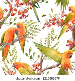 Watercolor tropical pattern with parrot lovebirds on the tree, Tropical flower   Royal Poinciana. Delonix regia