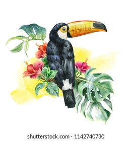 watercolor. Tropical toucan, red exotic flower, leaves