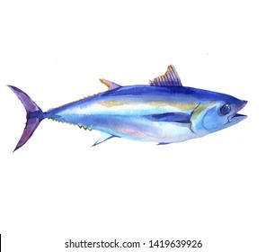 Watercolor Tuna fish isolated on a white background illustration.