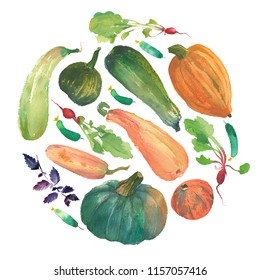 Watercolor vegetable circle with a natural illustration of veggies for design sign, agribusiness logo, organic food banner, healthy brand labels. Freshness watercolor painting pumpkin, squash, radish.