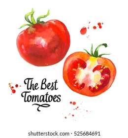 watercolor vegetables illustrations. Fresh organic food. Set of red tomatoes. Simple painting sketch.