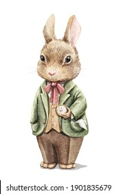 Watercolor vintage boy bunny rabbit in suit holding gold pocket watch isolated on white background. Watercolor hand drawn illustration sketch