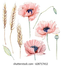 Watercolor vintage floral set. Spring or summer decoration floral bohemian design. Watercolor isolated. There are poppy, wheat. Perfect for invitation, wedding or greeting cards.