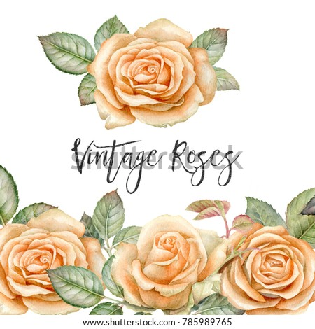 Royalty Free Stock Illustration Of Watercolor Vintage Roses Leaves