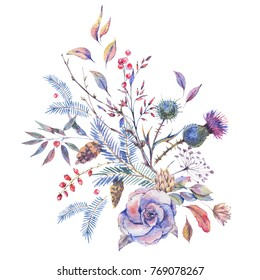 Watercolor vintage roses, thistles, wildflowers, twigs, spruce branches, berries and leaves. Floral greeting card isolated on white background, Natural winter decoration, Holiday illustration