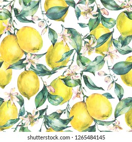 Watercolor vintage seamless pattern, branch of fresh citrus yellow fruit lemon, green leaves and flowers, Natural illustration isolated on white background